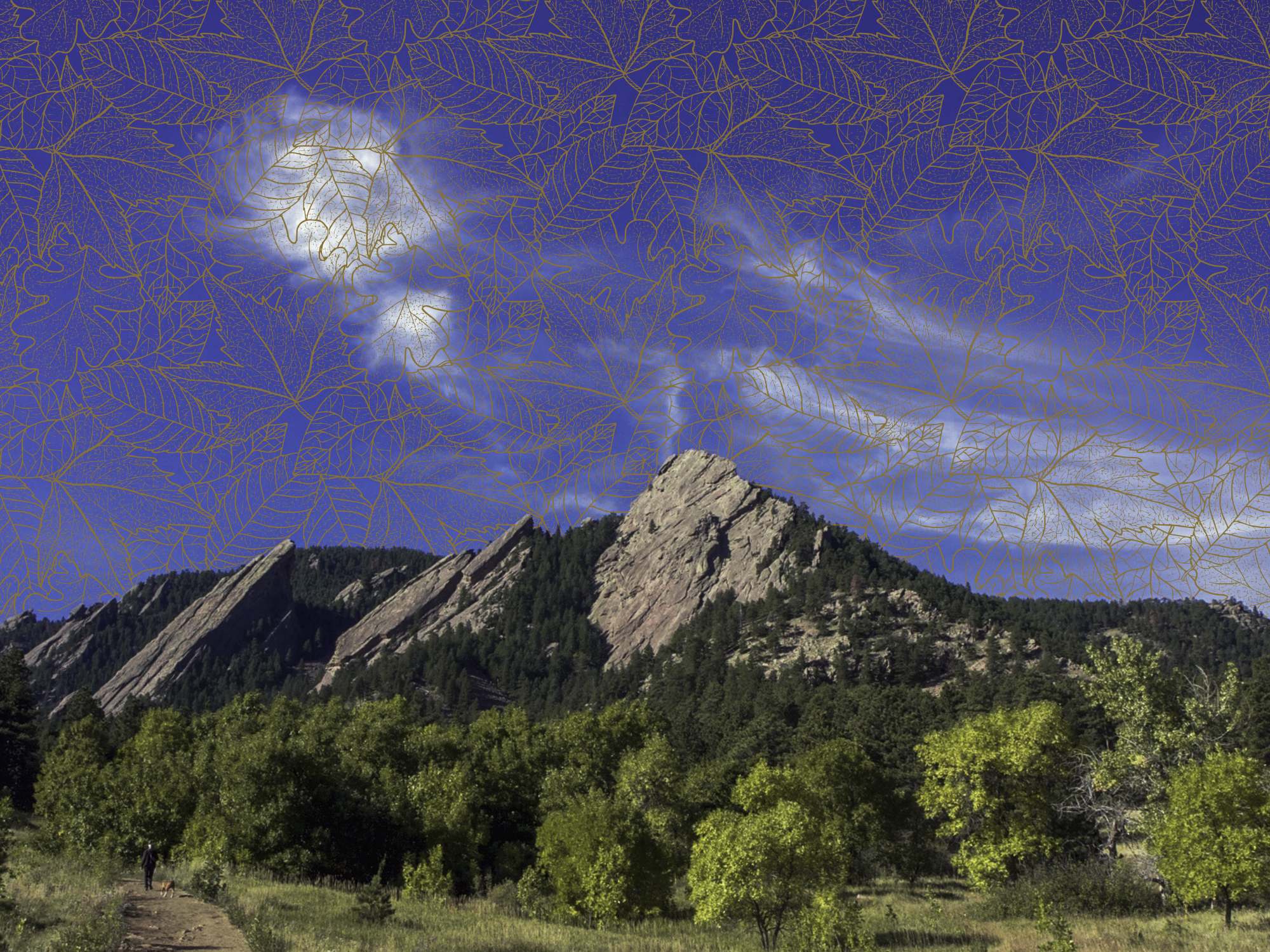 fall test prep courses, classes, private tutoring and schedule in Boulder, CO