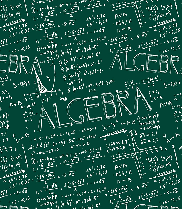 denver summer enrichment intro to algebra ii pre calculus